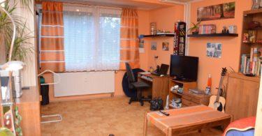 obývací pokoj a ložnice v jednom, skládací postel je schována ve skříni