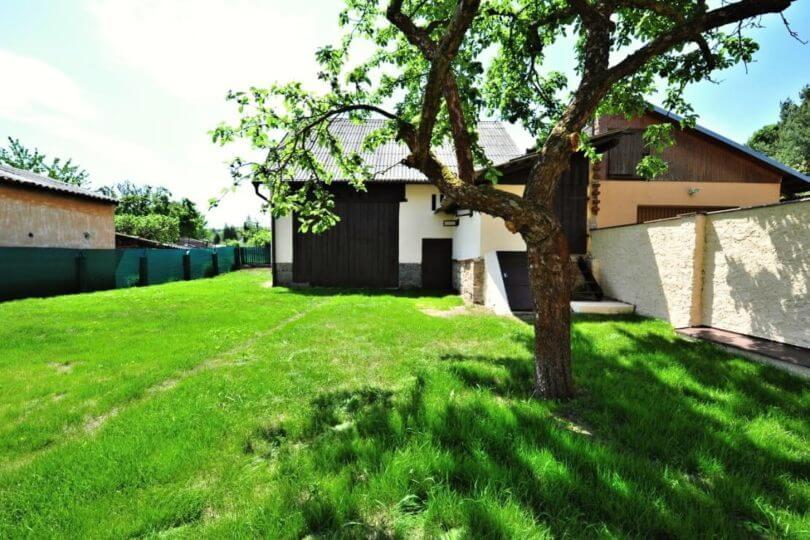 zahrada, stodola, strom jabloň
