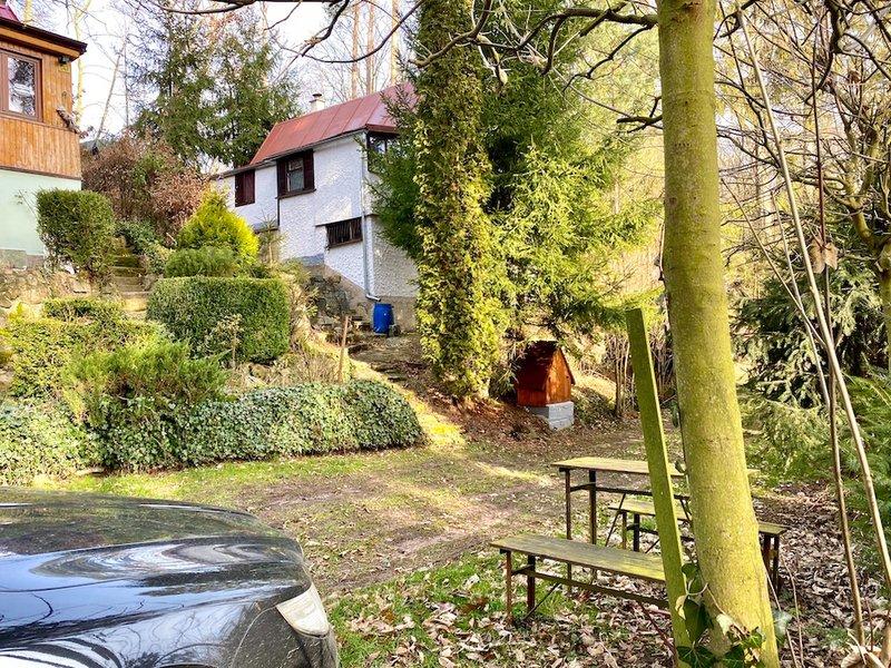 chata v lese, lavička, zakrytá studna