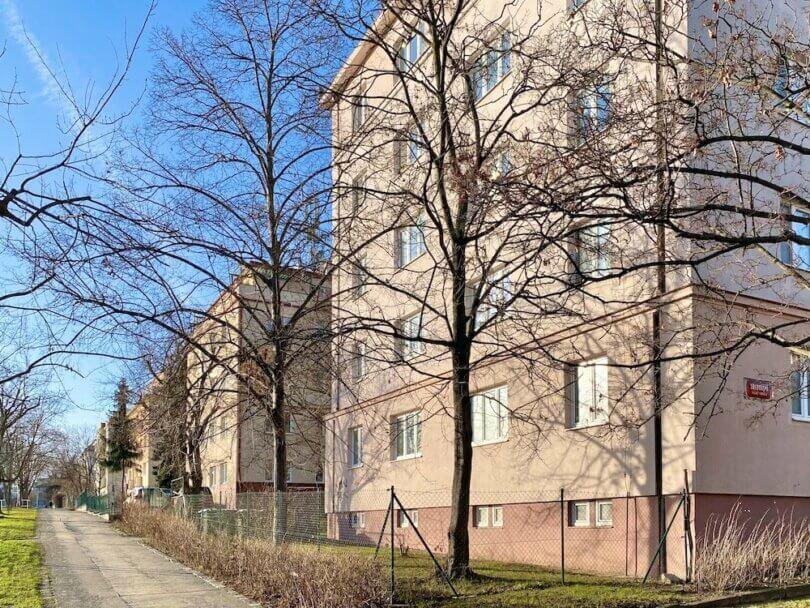 cihlový zateplený dům, stromy a chodník