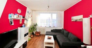 obývací pokoj, televize, černá pohovka a malý konferenční stolek
